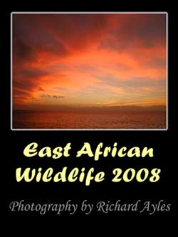 East African Wildlife Calendar